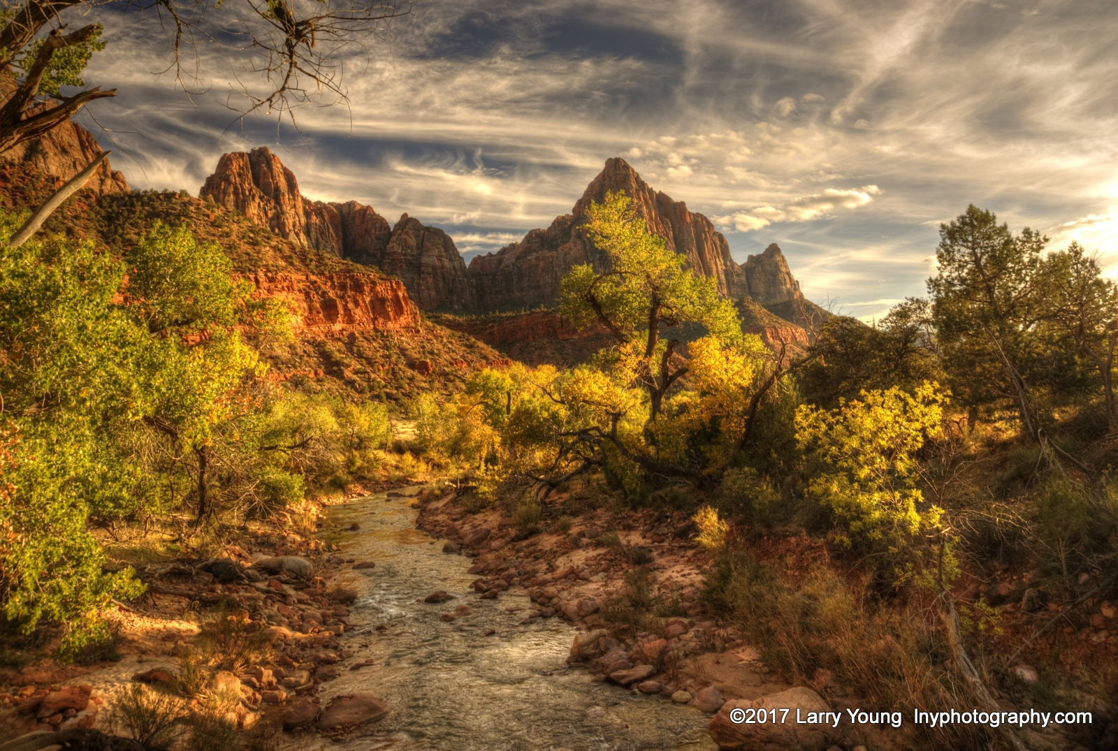 Favorite Photographs, Zion National Park